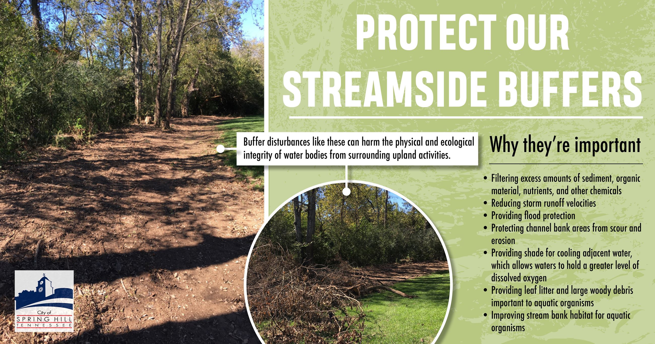 Streamside buffer